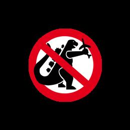 No Godzilla