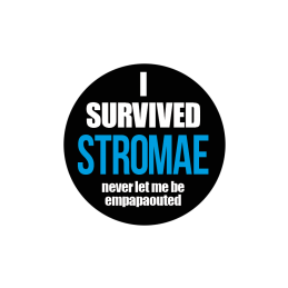I Survived Stromae