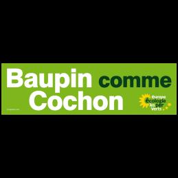 Baupin comme Cochon